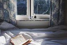 Window love / All we love windows.