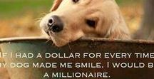 Dog Quotes - Funny, Loving, and Inspirational