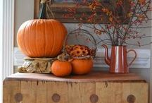Fall/Halloween/Thanksgiving / by Caitlin Rice