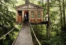 Dream House: Guest House Edition / by Kellielizabeth Cáceres