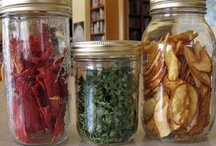 food preservation, storage, shelf life....