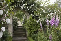 Hanham Court / Home of garden designers Isabel and Julian Bannerman; done in English romantic style