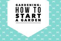 Gardening: Creating A Victory Garden / How to start a garden