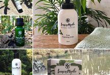 Rainforest Remedies skincare products / Lemon Myrtle Products - Buy online - Rainforest Remedies #RainforestRemedies #LemonMyrtlebodyscrub