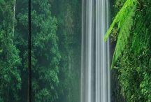 Nature's Beauties