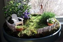 Zahrada/Garden