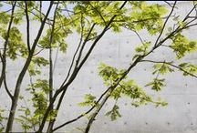 Niki Club East   Conran and Partners / Niki Club East, one of Japan's finest hotels, is a favourite escape destination from the clamour of the city. We worked on phase three of the development where the design concept was informed by the notion of a journey. On arrival, guests reach the first clearing where the main lodge is located. A meandering timber walkway through woodland leads to the second clearing, where timber-clad bedroom pavilions are sited informally around a communal court.
