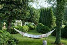 Garden & Yard / by Teresa Cornehls Smith
