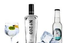 GIN / Las mejores ginebras  del mercado en www.gintoniks.es http://www.gintoniks.es/blog/