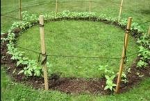garden-y goodness