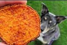 Pet Food Recipes, Pet Parties more / Healthy home made pet food for our furry friends. How to throw a dog party, and lots of good to know information!