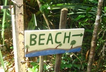 Beach / by Nectar Sunglasses