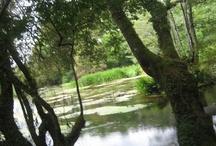 Galicia y el agua, una perfecta combinación / paisajes gallegos