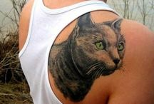 Cattoos / Cat Tattoo