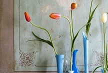 TS   STYLE / Showcase of beautifully 'styled for photography' interior design...