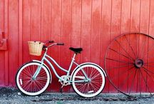 i want to ride my bicycle / by Cara
