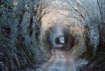 Wintertime / by * Marianne *