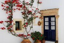 Mexico Dream House / by Anna Joyce