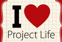 Project Life / by Tami Casper