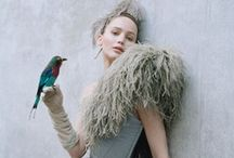 where the wild things are. / the story in feathers, masks, tusks and the like...