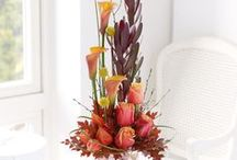 Autumn Inspiration / Get in the spirit of autumn with our seasonal designs