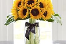 Sunflowers / Sunflowers are an uplifting choice in flower when it comes to choosing a cheerful arrangement to send.