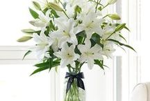 Lilies / With their large petals and sweet fragrance, lilies are ideal for larger arrangements.