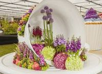RHS Chelsea Flower Show / Following five prestigious medals in consecutive years, Interflora plan to wow the crowds once again at RHS Chelsea Flower Show with another stunning floral design exhibit created by a team of award-winning florists.