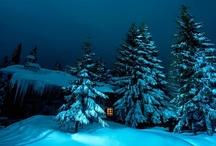 Winter ll