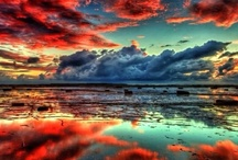 Reflections / by Gina Copestick