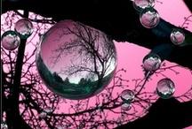 Bubbles / by Gina Copestick
