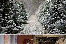 Christmas / by Sydney Cloud