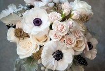 Decor / holiday decor and wedding / by Karmin