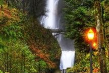 WATERFALLS / WATERFALLS ARE THE MOST BEAUTIFUL THINGS ON THIS EARTH. TO WATCH THE FLOW OF THE WATER IS SO CALMING AND THE WONDEREST POWER THEY CARRY / by Nancy Huntington