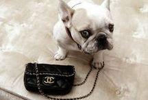 Handbags & Clutches / by Melanie DeLomba