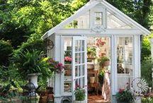 Greenhouse Ideas / by Melanie DeLomba