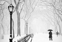 winter / by Phyllis Howell