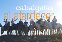 Cabalgatas al atardecer en Mendoza