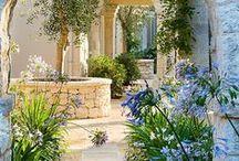 Mediterranean Gardening / Gartenideen vom Mittelmeer