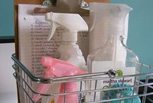 Cleaning Tips / by Danielle Beamesderfer