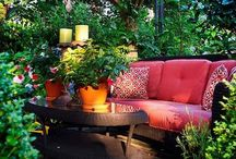 Gardening & patio ideas / by Tricia Woolbright