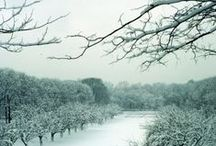 Winter Wonderlands /  The beauty of winter in the natural world is sometimes subtle, and sometimes stunning.