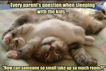 Funny! :p