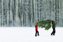 Inspiration: Christmas time / by Angela Millan Garcia