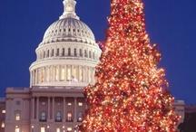 Christmas In Washington DC / by Cheryl Hudson
