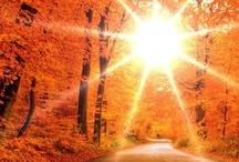 Hello Sunshine!! ☀ / Sunrise and Sunset