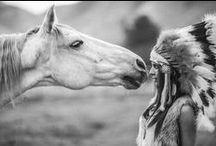 Cowboys, Horses & Barns
