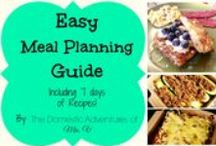 Money Saving Tips & Meal Plans / by Lindsey Nunley