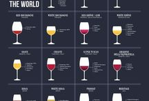 Wine Education / Learning about wine