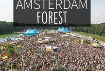 """Forest - Amsterdam Guide / Do you want to explore the greener side of Amsterdam? Between Amsterdam Old South and Amstelveen there's a forest to wander and relax in. Your Little Black Book knows the must visit places for when you're exploring Amsterdam Forest, The Netherlands. Including hotspots, restaurants, festivals, shops, bars and more. ➜ DOWNLOAD OUR APP with over 700 addresses, just search for """"YOURLBB"""" in your app-store!"""